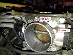 Throttle Body bolts